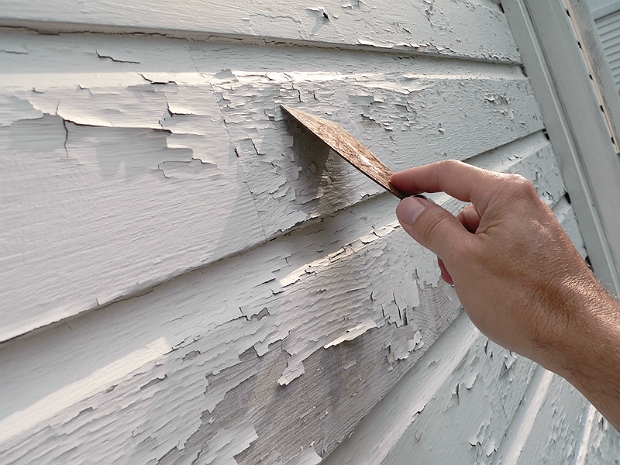 Health hazard evaluation reliance home inspection services for Lead based paint inspection